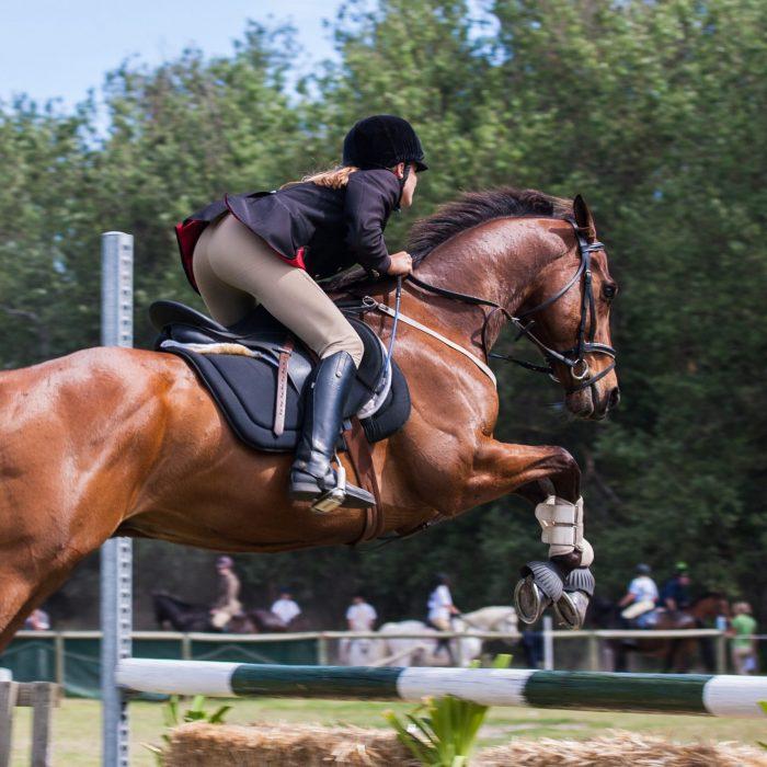 person-riding-a-horse-1559388